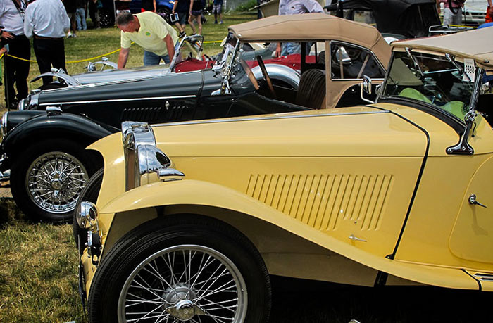 British Beauties at the 2015 Greenwich Concours, by Dom Miliano